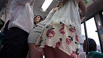 Japanese Babes Public Fucking On The Train