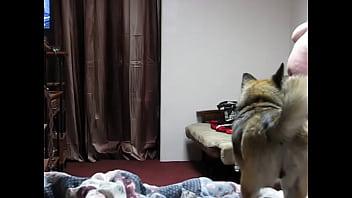 Schlafzimmer-Spion