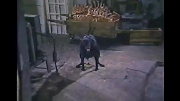 La Perdizione aka Marina's Animals (1986) - XNXX COM