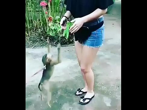Lyndsay lohans pussy